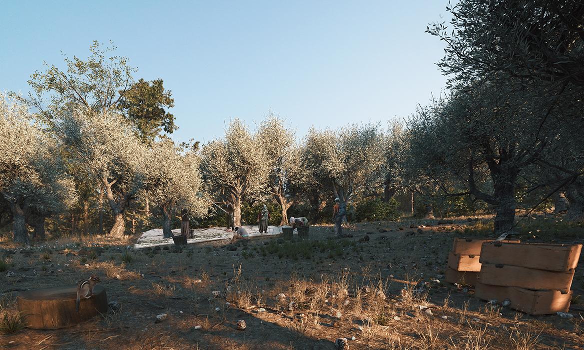 Olivelo_C7